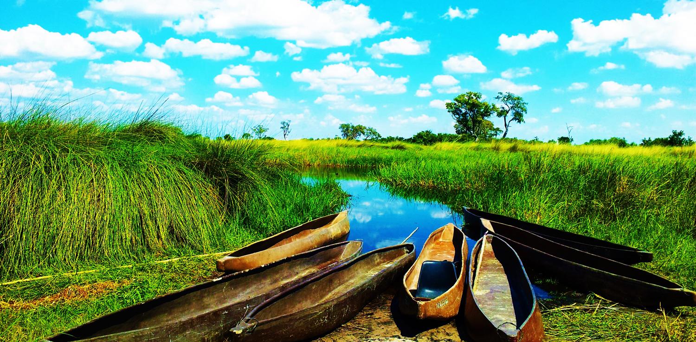 Walking safari in the Okavango Delta in Botswana